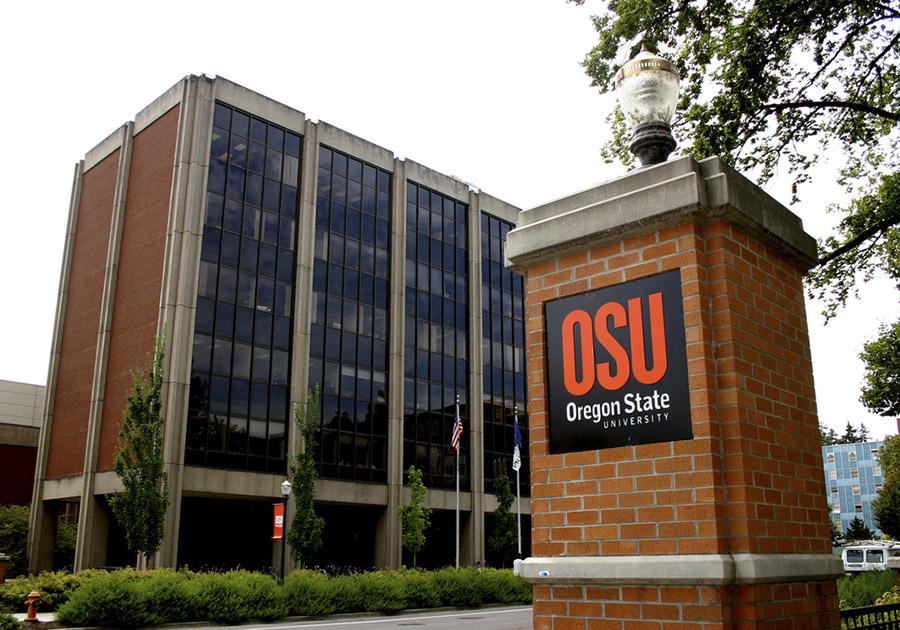 Как выбрать университет в Америке. Фото - 6