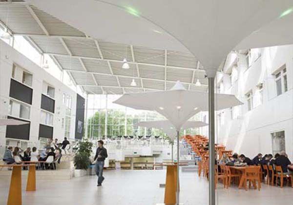 Приближая будущее с Hanze University Groningen. Фото - 5