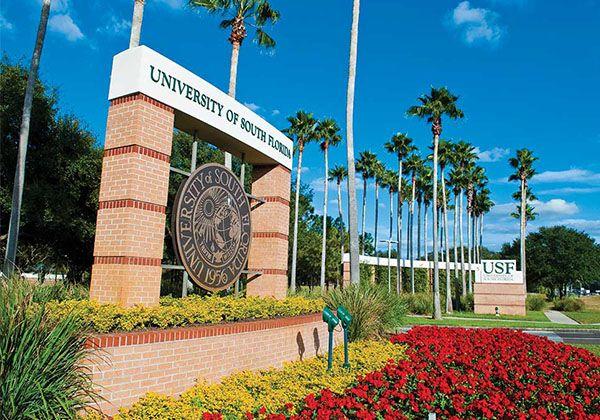 USF: высшее образование во Флориде. Фото - 3