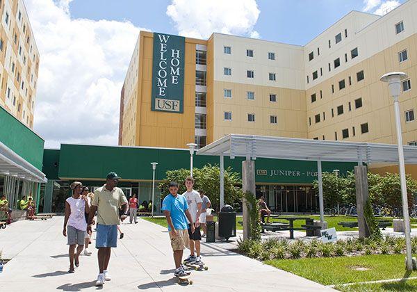 USF: высшее образование во Флориде. Фото - 5