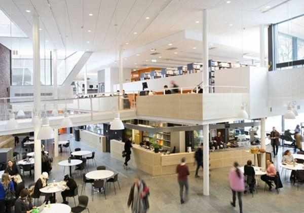 CEG: ONCAMPUS. Готуємося до вищої освіти по-англійськи. Фото - 5