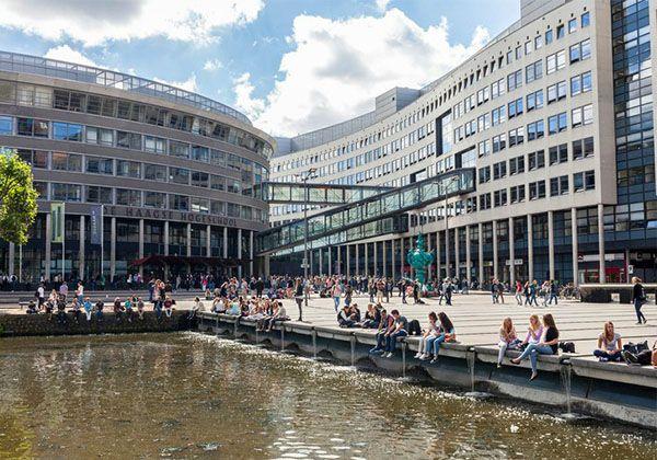 Образование в Нидерландах – большие возможности для украинских студентов. Фото - 9