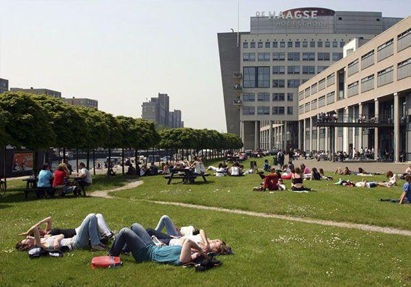 Образование в Нидерландах – большие возможности для украинских студентов. Фото - 7