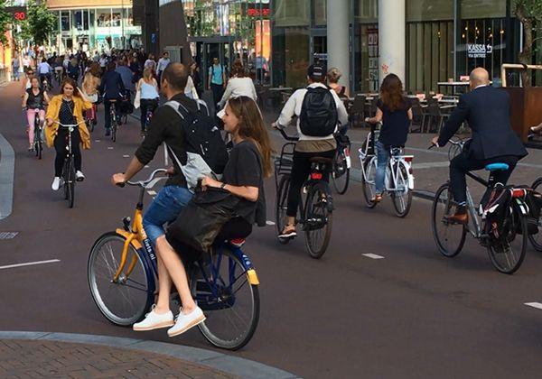 Образование в Нидерландах – большие возможности для украинских студентов. Фото - 5