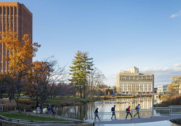 Безопасность на кампусе: рейтинги и советы студентам. Фото - 7