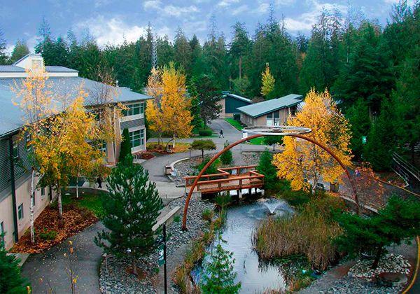 Green River College – мост между школой и высшим образованием в топовом вузе США. Фото - 8