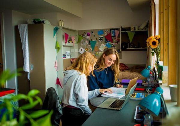 Программы «английский+» от Bucksmore Education: учись, развивайся, путешествуй! . Фото - 4