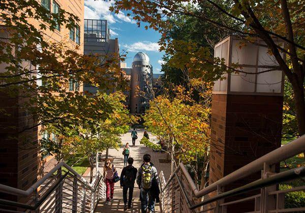 George Mason University: STEM-образование в США. Фото - 4