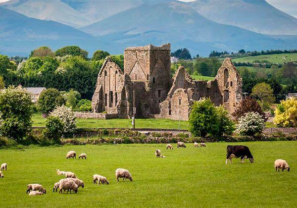 Чем Ирландия привлекает студентов и туристов со всего мира. Фото - 6