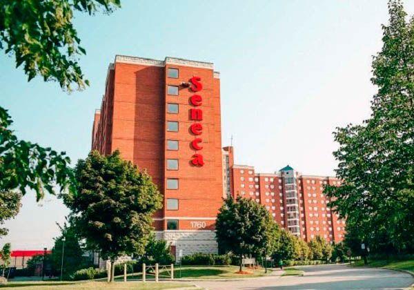 Seneca College – гарантия успешного будущего и блестящей карьеры. Фото - 8