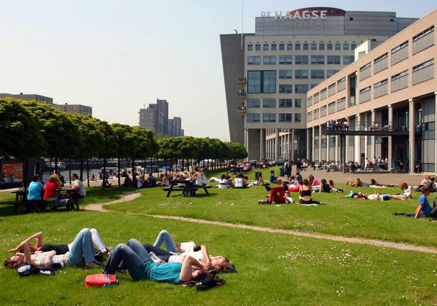 Образование в Нидерландах: высокие стандарты и прикладной характер обучения. Фото - 7