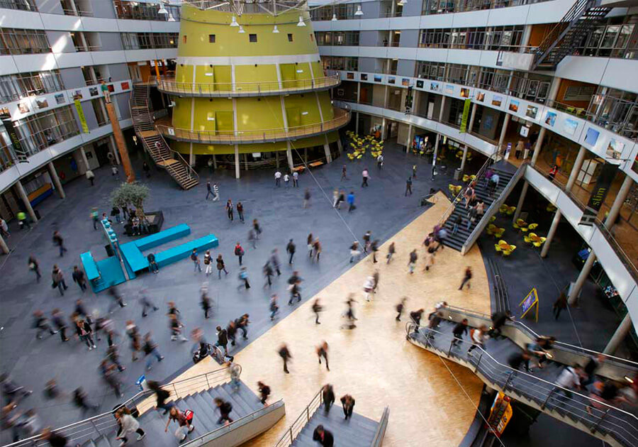 Образование в Нидерландах: высокие стандарты и прикладной характер обучения. Фото - 9