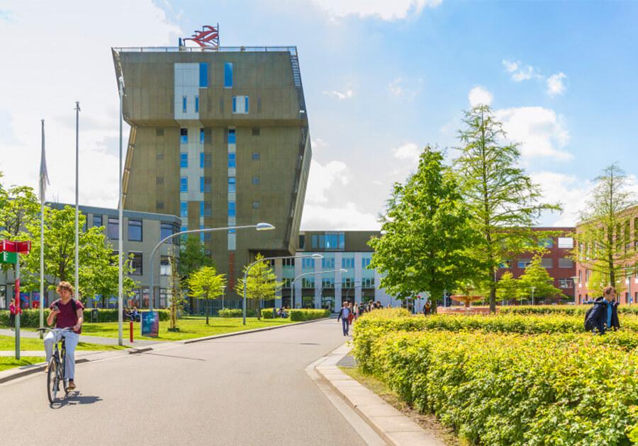 Освіта в Нідерландах: високі стандарти та прикладний характер навчання. Фото - 4