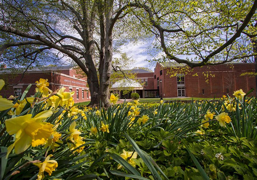 Подготовка к поступлению в университеты США. Фото - 6