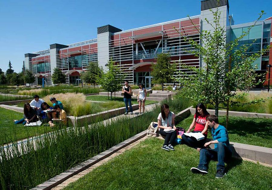 Foothill College – прямой путь в престижные университеты США. Фото - 3