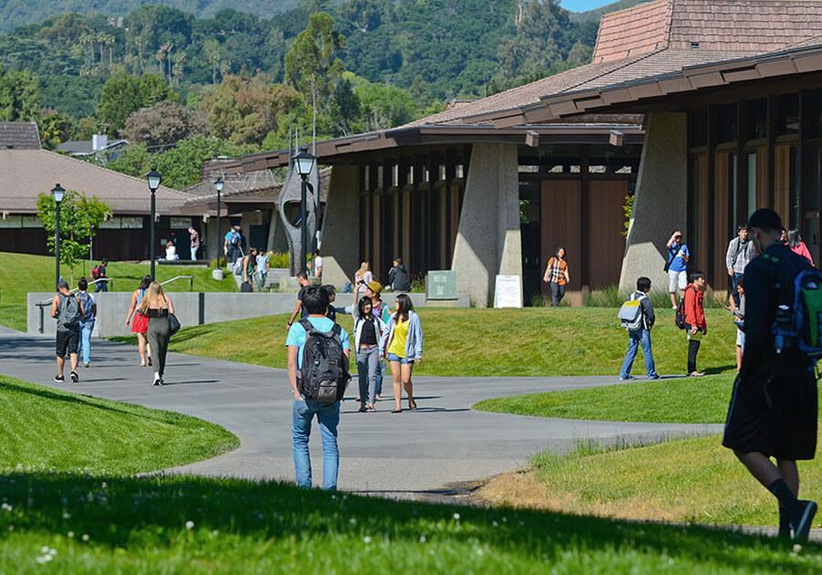 Foothill College – прямой путь в престижные университеты США. Фото - 5