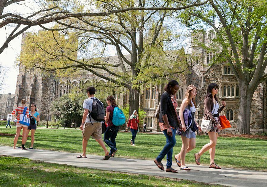 Бесплатное обучение в университете — это реальность?. Фото - 3