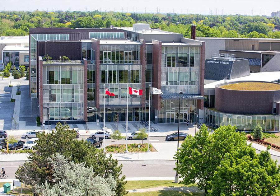 Образовательная стратегия для трудоустройства в Канаде – интервью выпускницы. Фото - 4