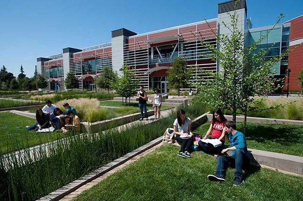 Економія $18 тисяч на рік: вступаємо у ком'юніті-коледжі США. Фото - 6