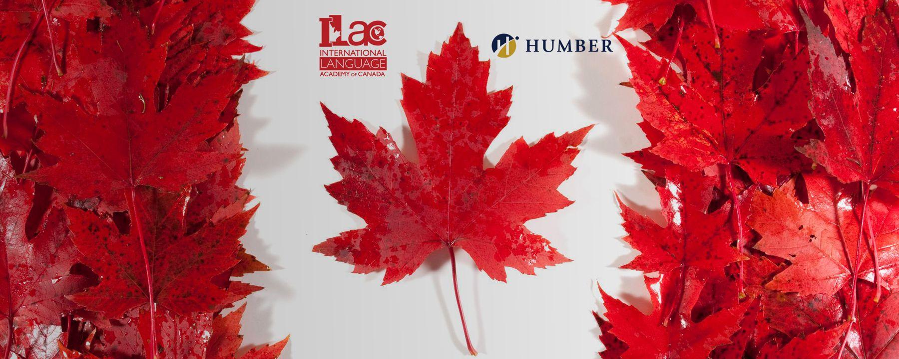 Путь в престижные колледжи и вузы Канады. Фото - 3