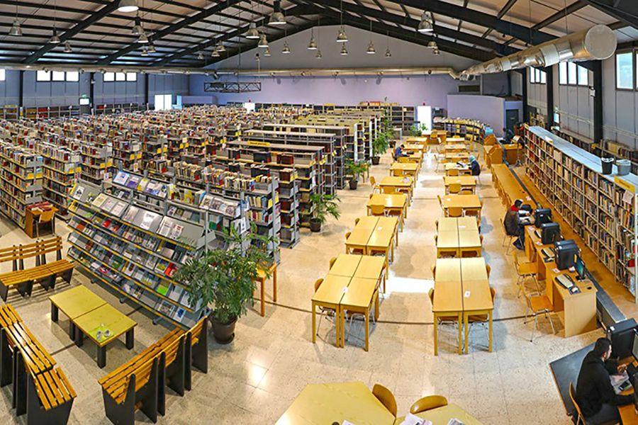 Преимущества обучения на Кипре для украинских студентов. Фото - 13