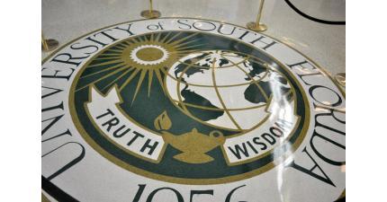Индивидуальные консультации представителя INTO University of South Florida (США). Фото - 8