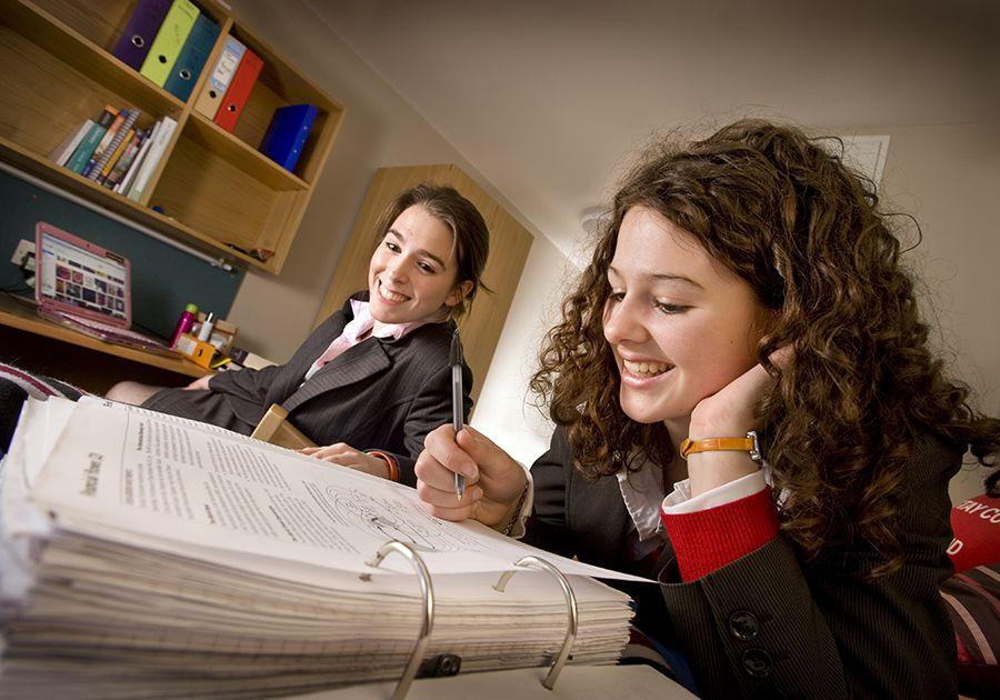 Академическая подготовка к зарубежной школе от DEC education. Фото - 5
