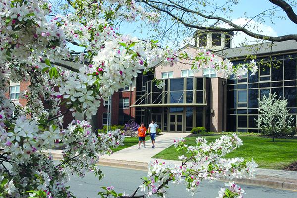 Обучение в Kings Education Ryder University. Отзыв Натальи, мамы Давида. Фото - 6