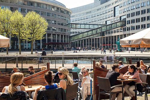 Обучение в The Hague University of Applied Sciences. Отзыв Натальи Фисталь. Фото - 6