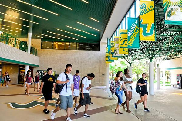 Обучение в University of South Florida. Отзыв Натальи Соломенцевой. Фото - 3