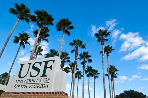 Обучение в University of South Florida. Отзыв Натальи Соломенцевой. Фото - 4