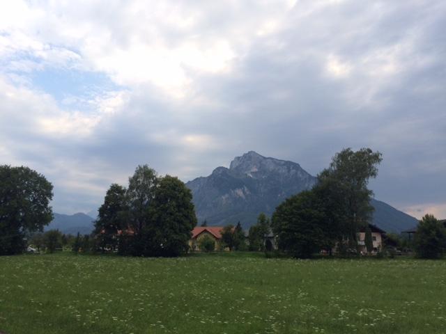 Обучение в AIS-Salzburg. Отзыв Дмитрия Гандзий. Фото - 5