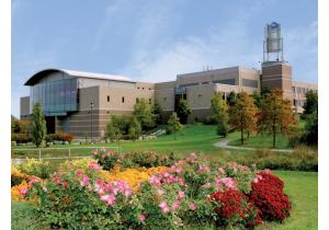 Высшее образование - страна: Канада            . Фото - 17