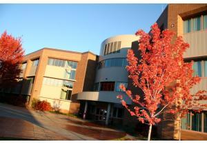 Высшее образование - страна: Канада            . Фото - 11