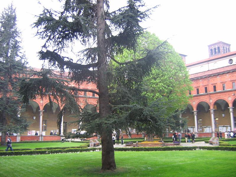 Università Cattolica del Sacro Cuore. Фото - 4