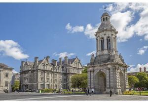 Высшее образование            . Фото - 11