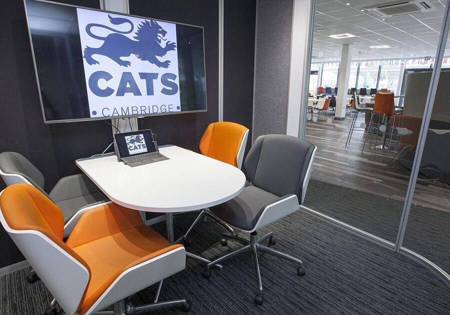 CATS College summer Великобритания. Фото - 18