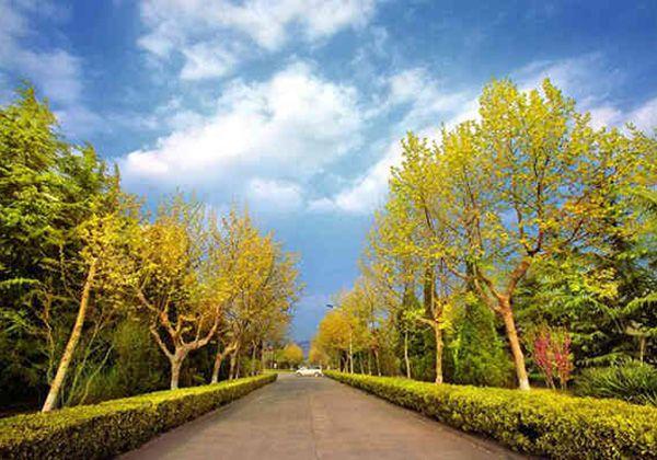 Jiangsu Ocean University. Фото - 4