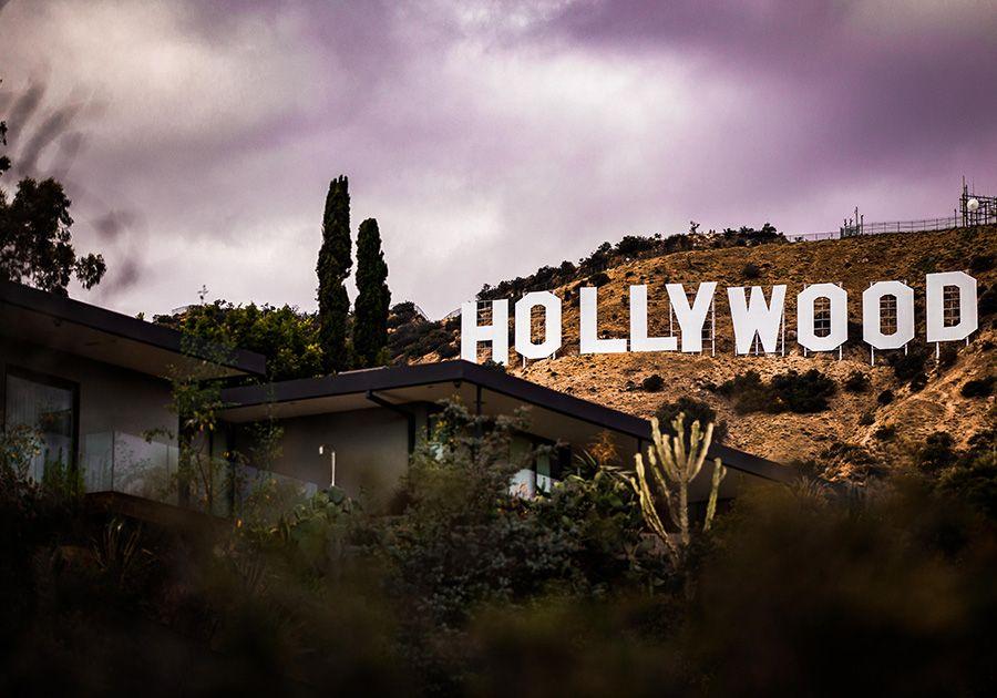 California Cinema Camp . Фото - 5
