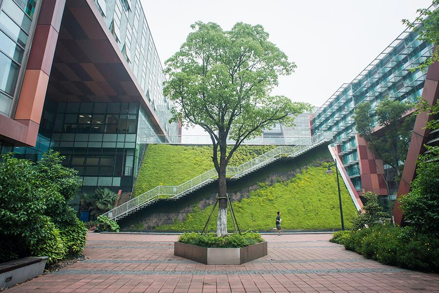 Xi'an Jiaotong-Liverpool University. Фото - 8