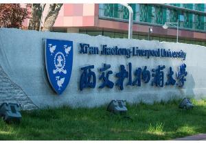 Высшее образование            . Фото - 59