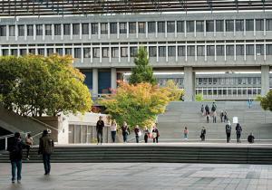 Высшее образование            . Фото - 7