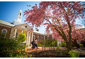Высшее образование            . Фото - 42