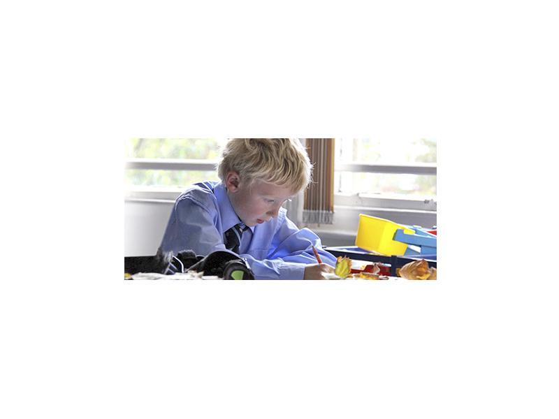 Среднее образование в Bedford School: Великобритания