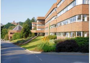 Высшее образование - страна: Великобритания            . Фото - 9