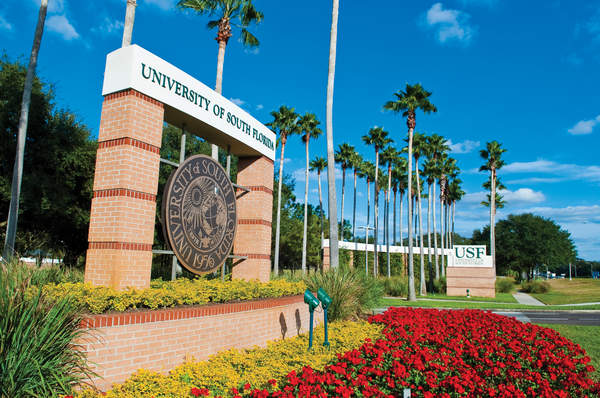 University of South Florida. Фото - 10